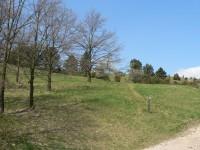 Na kraji rezervace Čachtický hradní vrch