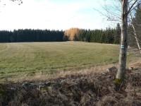 Krousov, pastvina