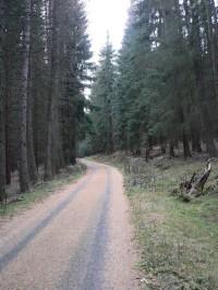 Cesta na svahu Milovského vrchu
