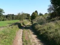 Cesta od Žichovic