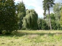 Liběchov, zámecký park