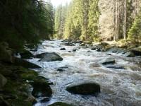 Jarní kouzlo řeky Vydry.