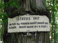 Češovské valy