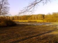 rybník Náklaďák u Kovače