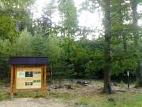 Černá stráň - Hradecké lesy