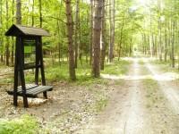 trasa - Naučná stezka Koliba