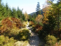 trasa - Špindlerův Mlýn - Harrachovy kameny - pramen Labe - Špindl