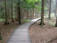 trasa - Naučná stezka Rejvíz