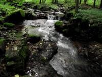 Jablonné nad Orlicí a jeho okolí (Kobylí důl, Suchý vrch)