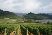 Dolomity Brenta, Val di Sole a velké italské dobrodružství 5 (po Strada del Vino kLago di Caldaro)