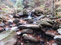 Borový potok