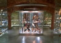 Opava, město muzeí