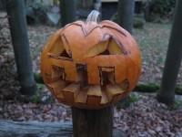 helloween v ZOO