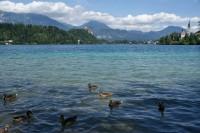 Julské Alpy na kole aneb cesta z hor k moři 4 (okolo Triglavu k jezeru Bled)