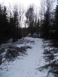 přístupová cesta