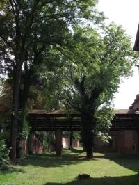 Olomouc – Fort Tafelberg (pevnost Tabulový vrch)