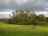podzim pod Měníkem