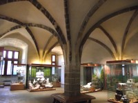 Pardubice – gotické sály