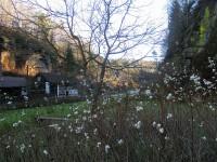 Pavlovický důl a Knížecí studánka