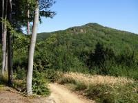 Vrch Komínek a na něm částečně viditelná Břestecká skalka