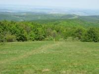 Výhled z vrcholu Javořiny na českou stranu