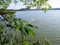 Rybník Stolařka, neznámá oáza klidu