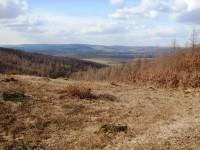 Výhled na hřeben Ždánického lesa