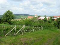 Vinohrady nad Kobylím