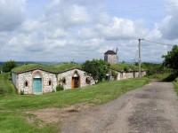Vinné sklepy ve Vrbici a replika větrného mlýna