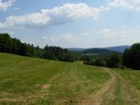 Louky mezi Věžnou a Pernštejnem