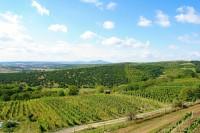 Výhled z Kraví Hory