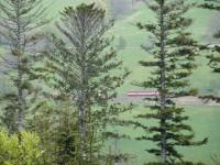 Motoráček spěchající údolím Brčálníku