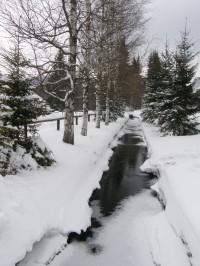 Dochovaný vodní náhon ve Stožci