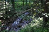 potok Lomná