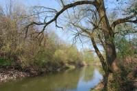 Řeka Odra mezi Polankou a Ostravou-Zábřehem