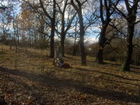 Židovský hřbitov v Hořenci.