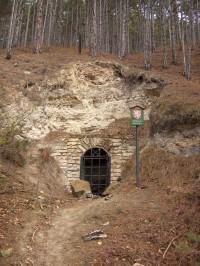 Přírodní památka Štola u Stradonic
