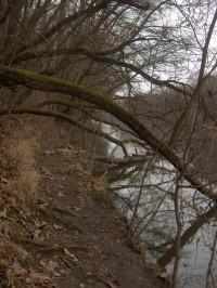 cestička po břehu Ohře