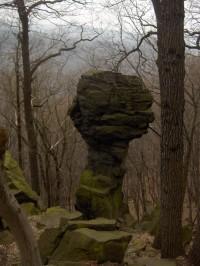 skalní hřib