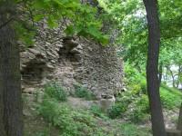 Zřícenina hradu litýš