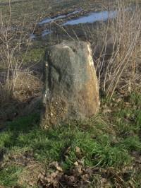Menhiry u Přelíce