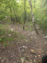 výstup na Lipskou horu
