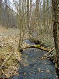 potok Osina