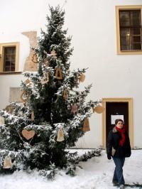 vánoční stromek na nádvoří