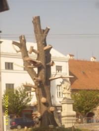 Strom nebo socha