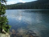 Šumavská jezera a Špičák