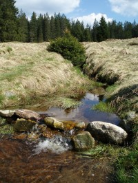 Potok Zlatá studna