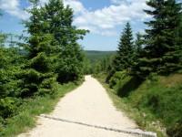 Cesta na Kneipu