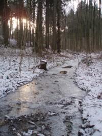 Potok Oleška