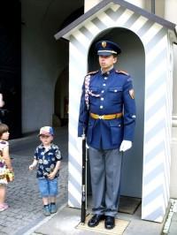 Hradní stráž
